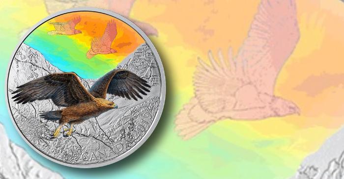 canada-2019-majestic-birds-header